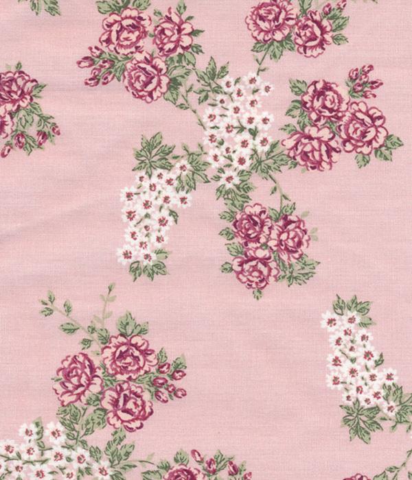 wt-rosen-auf-rosa